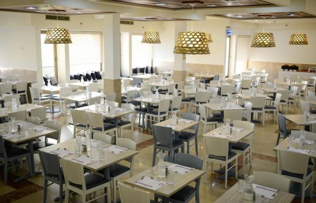фото отеля Orchid Dead Sea (ex. Tsell Harim) изображение №13