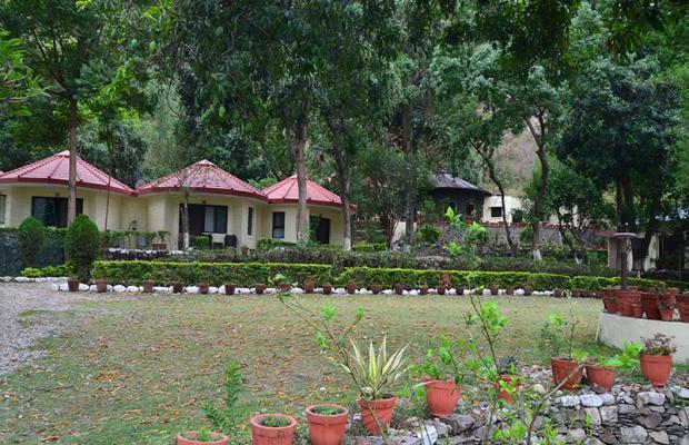 фотографии отеля Corbett Ramganga Resort изображение №15