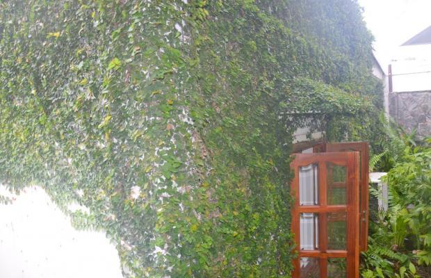 фотографии отеля Lavita Hotel изображение №35