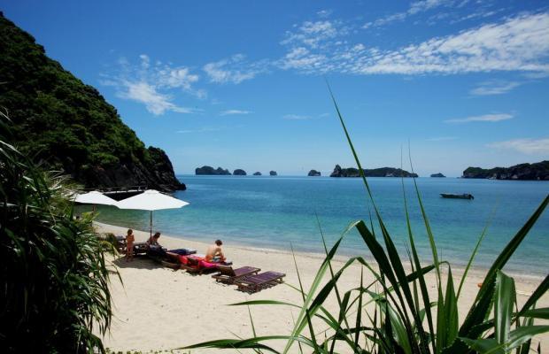 фото Monkey Island Resort изображение №10