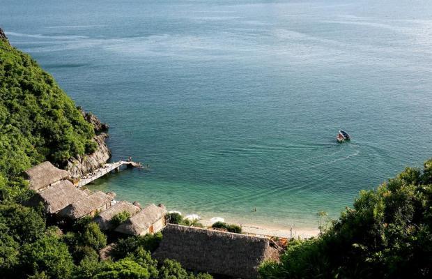 фотографии Monkey Island Resort изображение №8