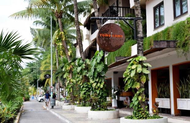 фотографии отеля La Tortuga Hotel & Spa изображение №3