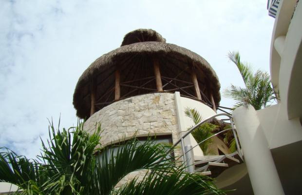 фотографии Blue Palms Suites (ex. Blue Parrots Suites) изображение №20