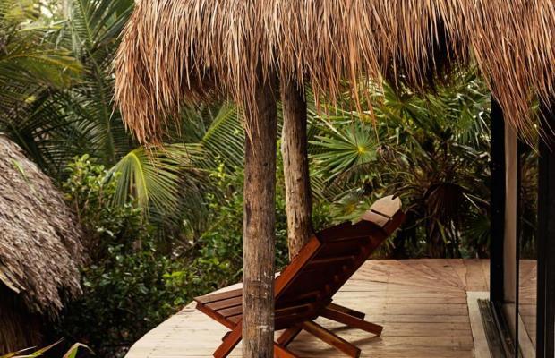 фото Papaya playa изображение №26