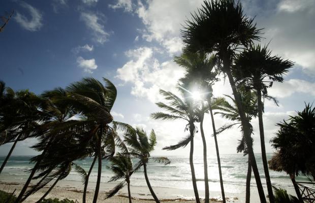 фото Papaya playa изображение №22