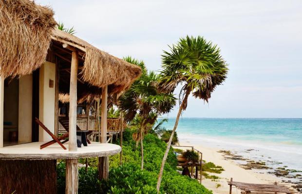 фото отеля Papaya playa изображение №9