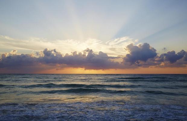 фотографии отеля Papaya playa изображение №7