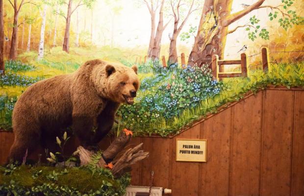 фото отеля Hansa изображение №33