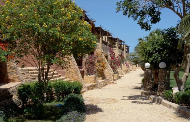 фотографии отеля Kahramana Beach Resort  изображение №27