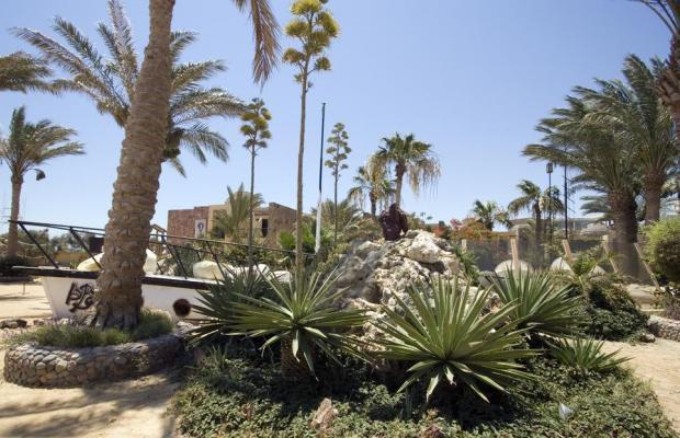 фото отеля Jewels Sahara Boutique Resort (ex. Sahara Hurghada Resort) изображение №13