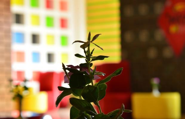 фотографии отеля Radisson Blu Resort (ex. Radisson Sas) изображение №3