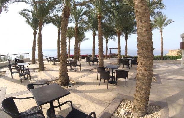 фотографии отеля Reef Oasis Beach Resort изображение №23