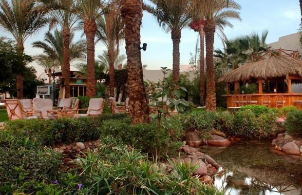 фотографии отеля Hilton Sharm Fayrouz Resort изображение №31