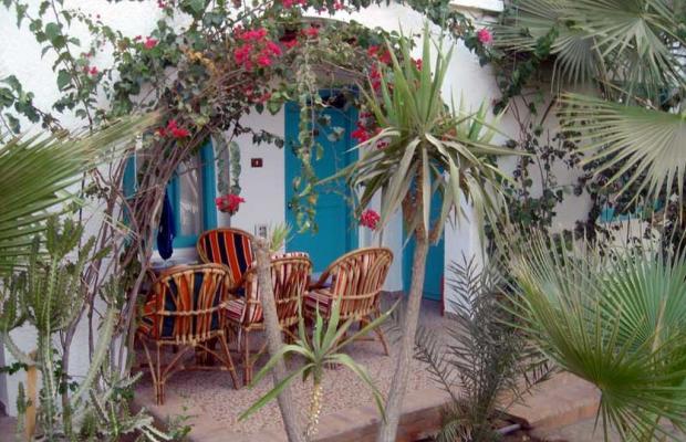 фотографии Hotel Planet Oasis изображение №24