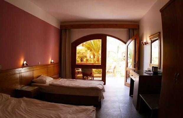 фото отеля Hotel Planet Oasis изображение №13
