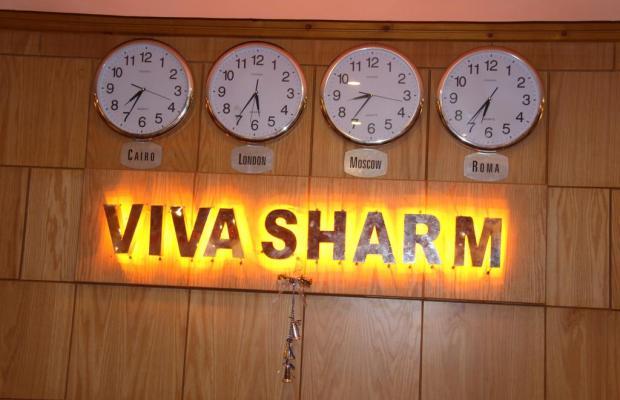 фотографии Viva Sharm (ex. Top Choice Viva Sharm; Falcon Inn ViVa Resort; Grand Viva Sharm) изображение №8