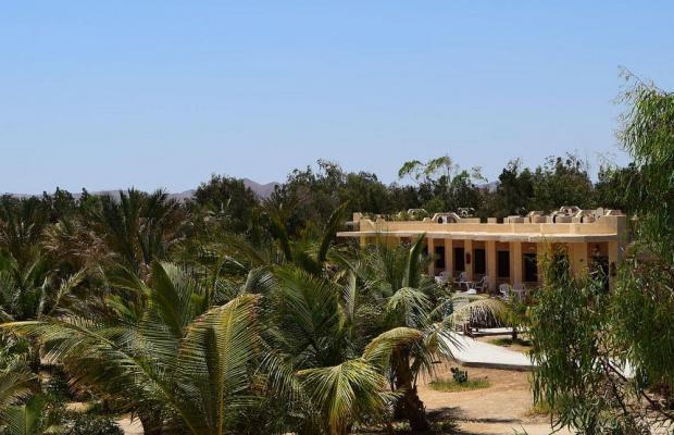 фото отеля Mangrove Bay Resort изображение №25