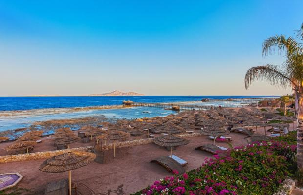 фотографии отеля Cleopatra Luxury Resort изображение №19