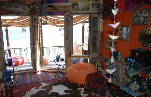 фотографии отеля Club El Faraana Reef Resort изображение №35