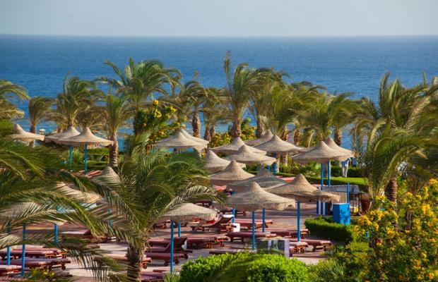 фотографии Fantazia Resort Marsa Alam (ex.Shores Fantazia Resort Marsa Alam) изображение №44