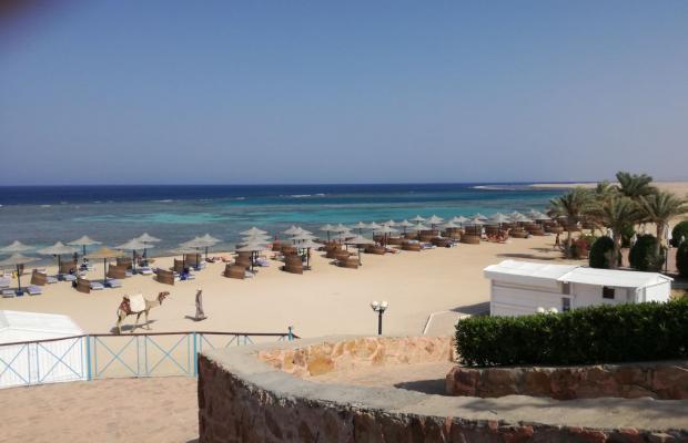 фотографии Fantazia Resort Marsa Alam (ex.Shores Fantazia Resort Marsa Alam) изображение №32