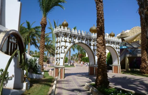 фото отеля Aladdin Beach Resort (ex. Dessole Aladdin Beach Resort) изображение №17