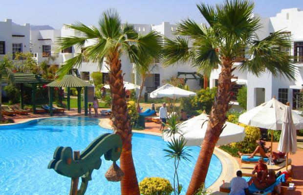 фотографии Delta Sharm изображение №16