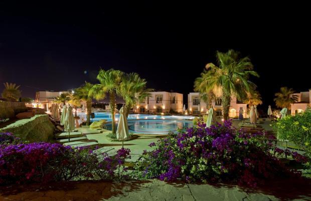 фотографии Shores Aloha Resort (Ex. Otium Hotel Aloha Sharm; Aloha Club & Resort) изображение №4