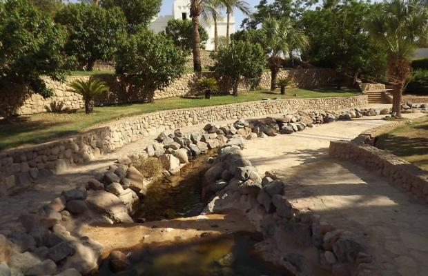 фото отеля Sharm Resort (ex. Crowne Plaza Resort) изображение №9