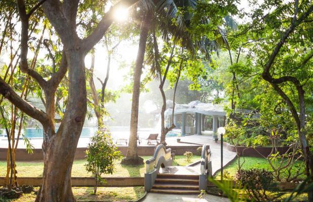 фотографии отеля Siddhalepa Ayurveda Health Resort изображение №11