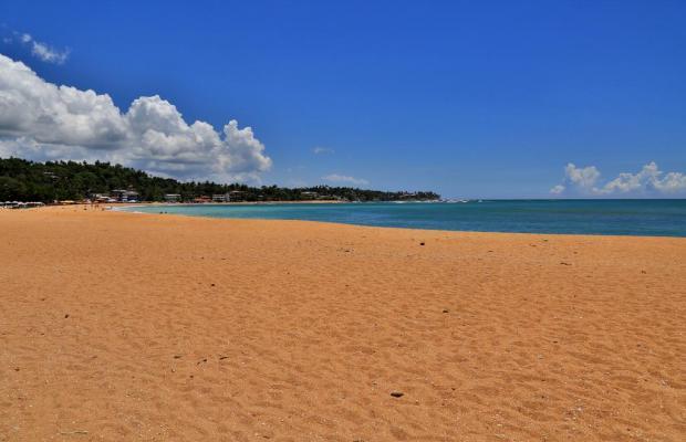 фото отеля Thaproban Beach House изображение №5