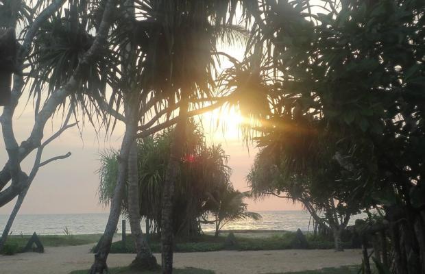 фотографии отеля Sri Budhasa Ayurveda Resort Ayurveda Walauwa изображение №7