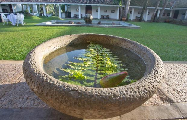 фото Tamarind Hill изображение №2