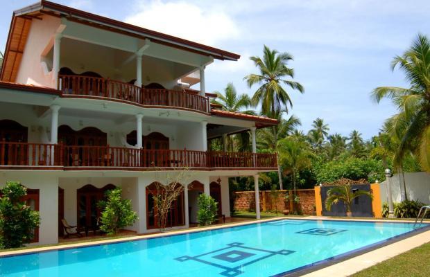 фотографии отеля Panchi Villa изображение №11