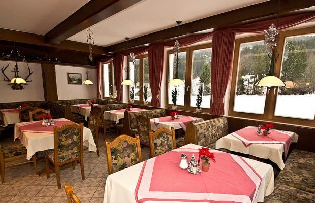 фото отеля Pension Wildschwendt изображение №37