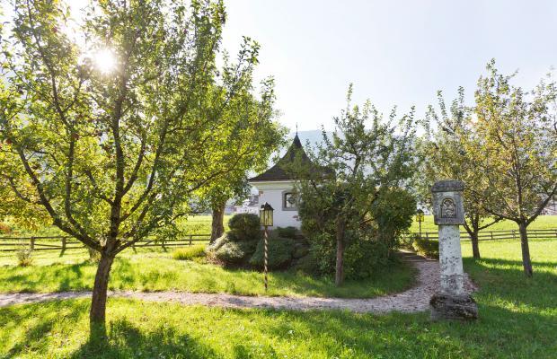 фотографии Alpendomizil Neuhaus изображение №28