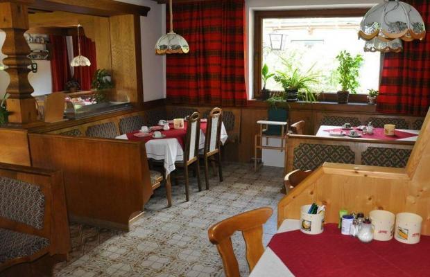 фото Alpina Hotel (ex. Alpina Pension) изображение №6