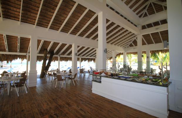 фотографии отеля Viva Wyndham V Heavens (ex. Viva Wyndham Playa Dorada) изображение №19