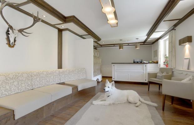 фото Austria Apartments изображение №22