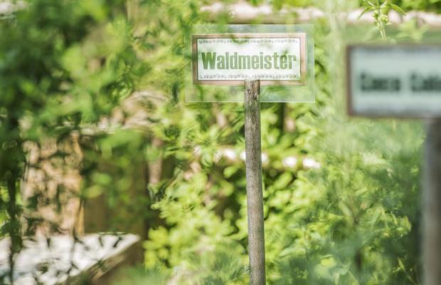 фото Alpenhof Kristall изображение №30