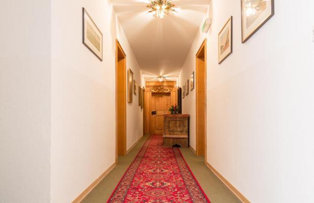 фото Appartement Regina изображение №14