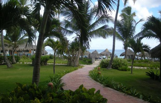фотографии VIK Arena Blanca (ex. LTI Beach Resort Punta Cana) изображение №16
