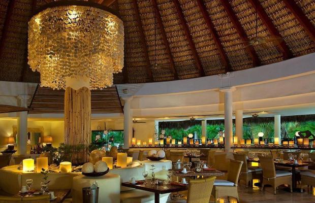 фотографии Melia Caribe Tropical Hotel изображение №8