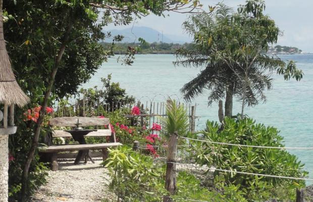 фотографии отеля Sea Turtle House изображение №11