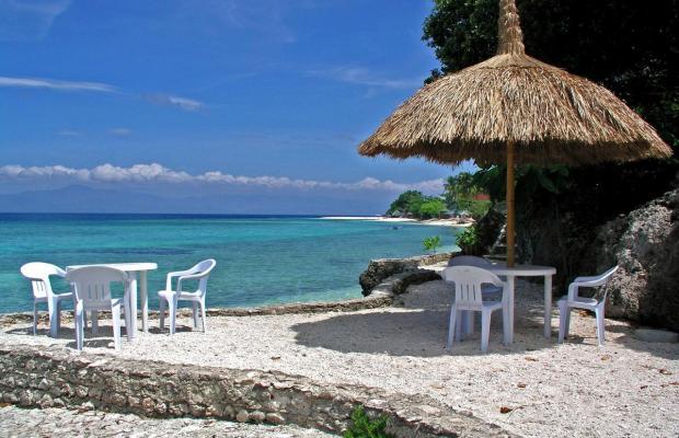 фотографии Dolphin House Resort Moalboal изображение №20
