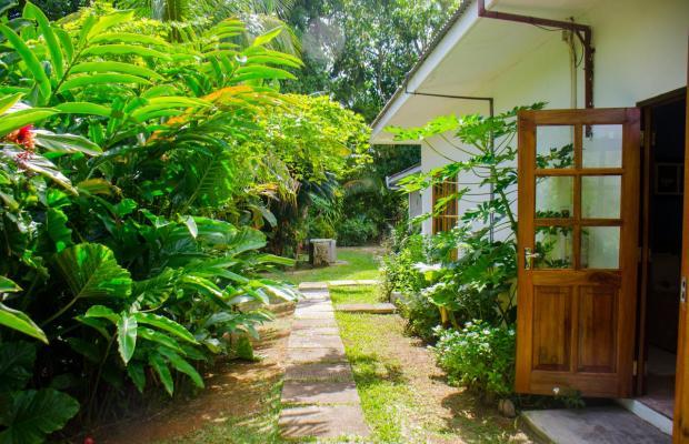 фото отеля Villa Rafia изображение №21
