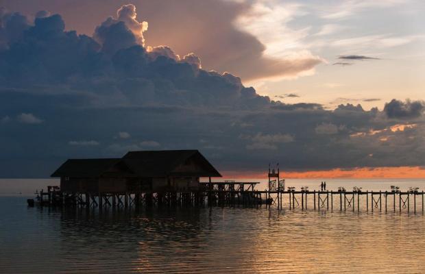 фотографии Lankayan Island Dive Resort изображение №8