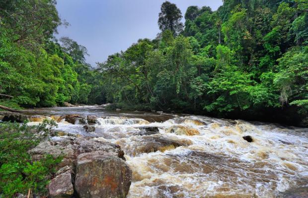 фото Mutiara Taman Negara Resort изображение №26
