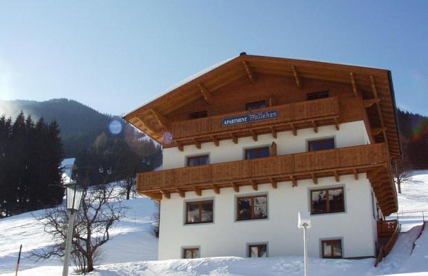 фотографии отеля Wallehen изображение №15