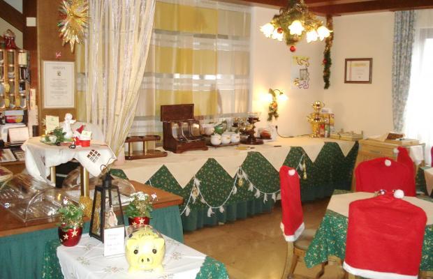фотографии отеля Stefanihof изображение №3